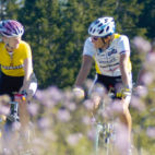 Radfahren mit Alpenpanorama